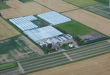 Another aerial view of E M Cole Farms site